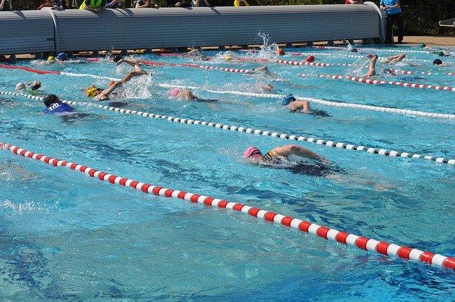 závodní plavání.jpg
