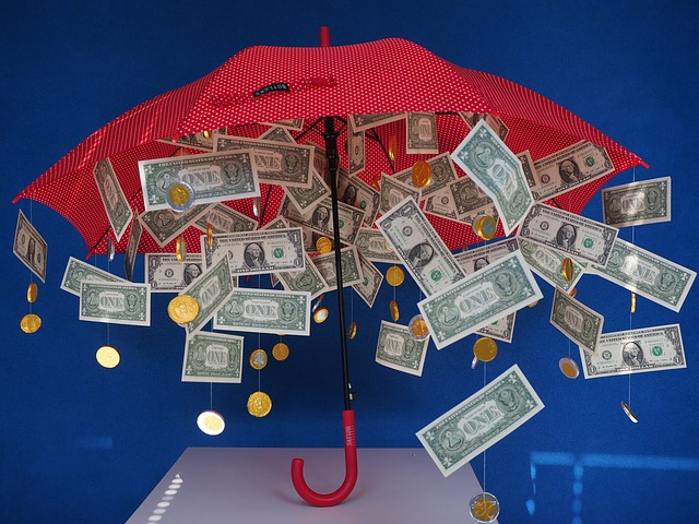 červený deštník, z něhož prší peníze